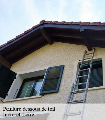 Entreprise Peinture Dessous De Toit 37 Indre Et Loire Tel 02 47 95 14 51